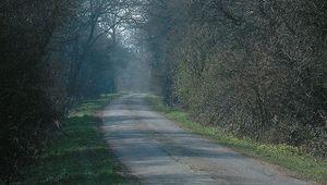 Thumb_great_north_road_dana_huntly