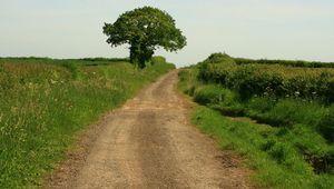 Along the Roman, Fosse Way.