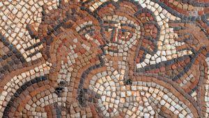 Detail from a mosaic at Chedworth Roman Villa.