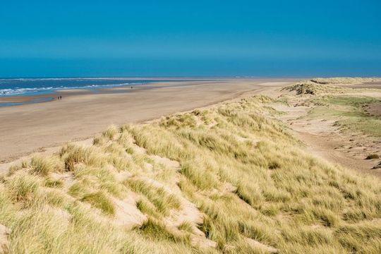 Sand dunes running along Holkham bay beach & Nature reserve on North Norfolk coast, East Anglia, England, UK.
