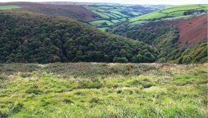 Thumb_somerset-devon