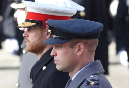 Prince Harry, Duke of Sussex and Prince William, Duke of Cambridge during the annual Remembrance Sunday memorial on November 11, 2018 in London, England.