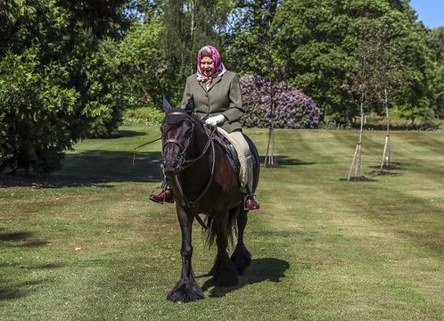 Issue date: Sunday May 31, Queen Elizabeth II rides Balmoral Fern, a 14-year-old Fell Pony, in Windsor Home Park over the weekend of May 30 and May 31, 2020 in Windsor, England. The Queen has been in residence at Windsor Castle during the coronavirus pandemic. (Photo by Steve Parsons - WPA Pool/Getty Images)