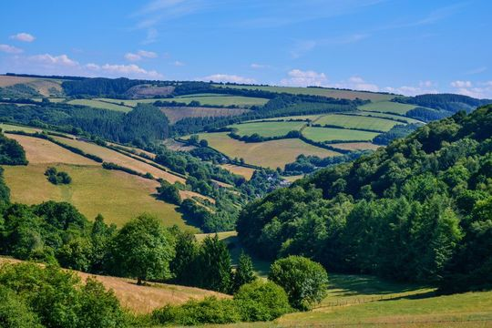 The countryside in west Somerset.