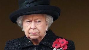 Thumb resized queen poppy