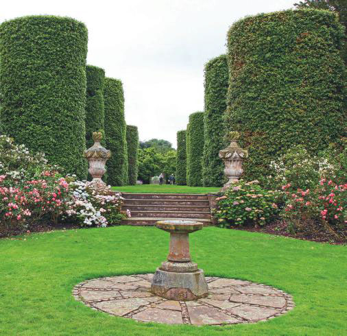 Arley Hall, Cheshire, Showcases This Avenue Of Trimmed Holm Oaks.