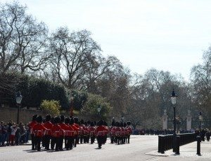 Guards on their way to Buckingham Palace PHOTO Sandra Lawrence